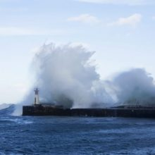 Navigating Uncertainty – Professional Coaches as Lighthouses